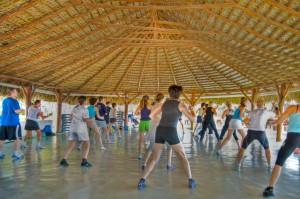 Exercise calisthenics #2